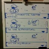 Differentiating e^x Is Not Very Effective According To Pokemon