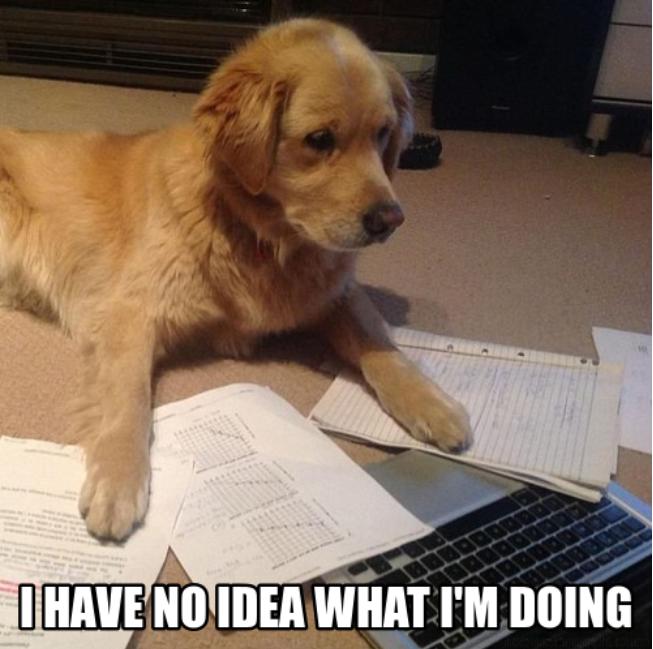 I Have No Idea What Im Doing on Exam Grade Meme