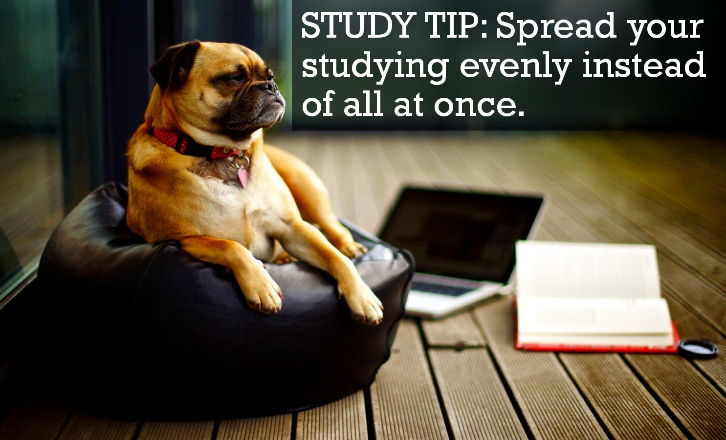 Spread Your Studying Evenly